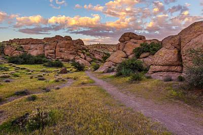 Desert Trails Art Print by Jason Keefe