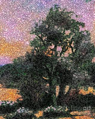 Painting - Desert Tree At Sunset by Hazel Holland