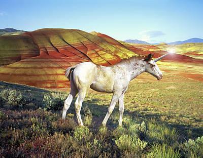 Unicorn Photograph - A Unicorn Named Redband by Buddy Mays