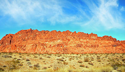 Photograph - Desert Valley Of Fire by Frank Wilson
