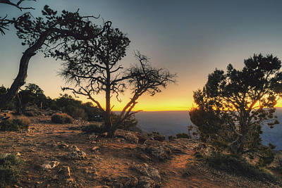 Photograph - Desert View Cliff Top by Ray Devlin