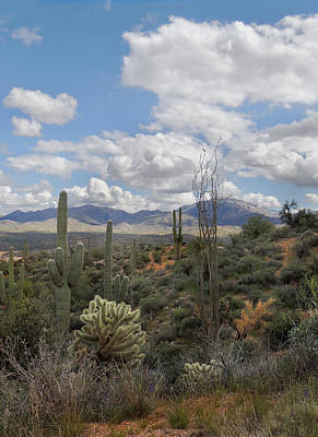 Carefree Arizona Photograph - Desert Vista by Gordon Beck