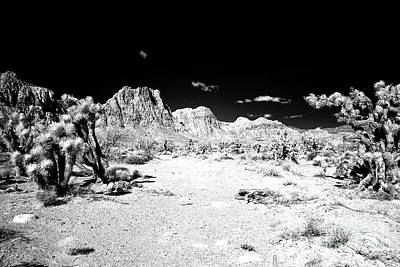 Photograph - Desert Wanderings by John Rizzuto