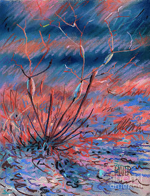 Drawing - Desert Weed by Donald Maier