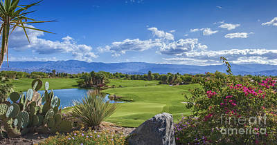 Desert Willow Golf Course  Art Print by David Zanzinger