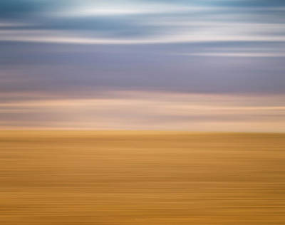 Photograph - Desert by Wim Lanclus