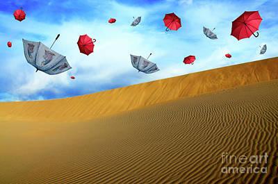 Photograph - Desert Winds by Bob Christopher