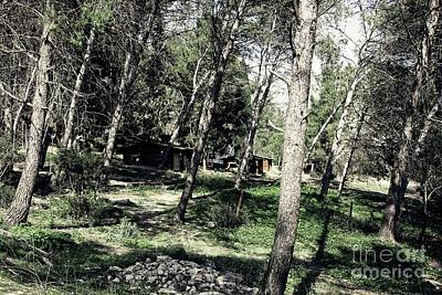 Photograph - Deserted Cabins by Jackie Mestrom
