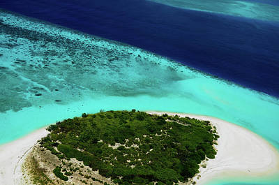 Photograph - Deserted Coral Island. Maldives  by Jenny Rainbow
