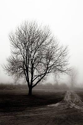 Photograph - Deserted by Denise Harrison