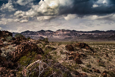 Deserted Red Rock Canyon Art Print