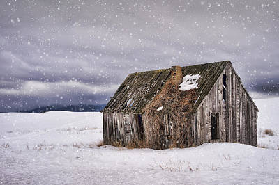 Photograph - Deserted by Priscilla Burgers
