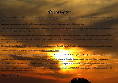 Photograph - Desiderata 25 by Steve Kearns