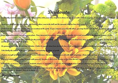Photograph - Desiderata 26 by Steve Kearns