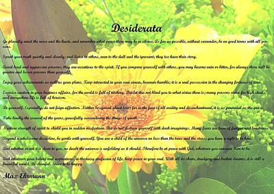 Photograph - Desiderata 27 by Steve Kearns