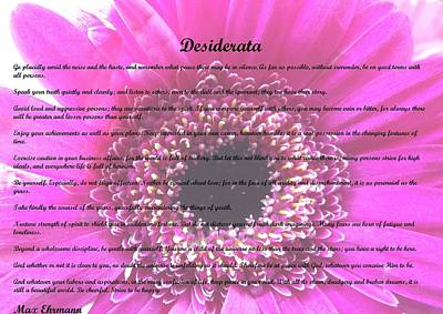 Photograph - Desiderata 30 by Steve Kearns