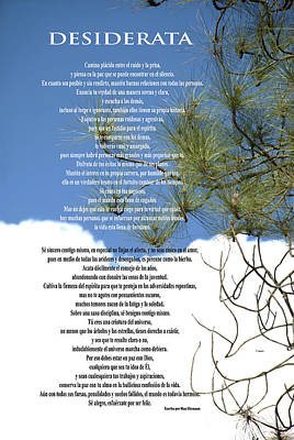 Photograph - Desiderata - Spanish- Poem Over Sky With Clouds And Tree Branches by Claudia Ellis