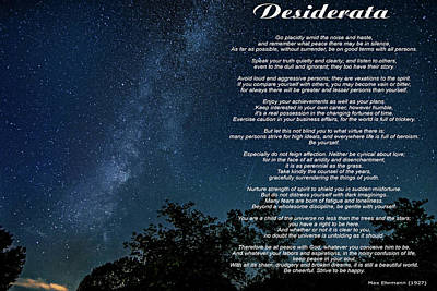 Abstract Flowers Royalty-Free and Rights-Managed Images - Desiderata - The Milky Way  by Steve Harrington