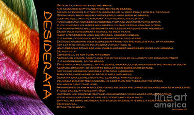Photograph - Desiderata 22 by Wendy Wilton