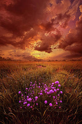 Unity Photograph - Desire by Phil Koch