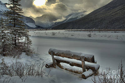 Photograph - Desolate Beauty Creek by Adam Jewell
