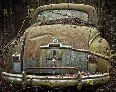 Photograph - Desolate Beauty by Denis Lemay