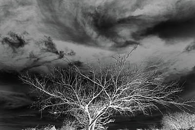 Desolate Feel Art Print by Yvonne Emerson AKA RavenSoul