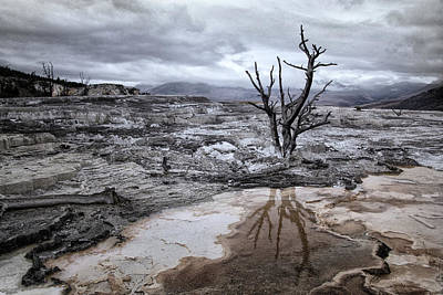 Photograph - Desolate Landscape In Yellowstone by Carolyn Derstine