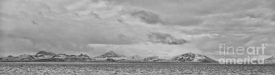 Antlers - Desolate Pano BW by Mitch Johanson
