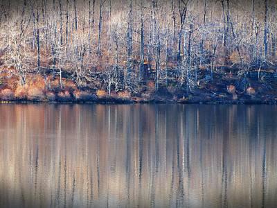 Desolate Splendor Art Print by David Dehner