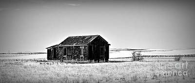 Photograph - Desolation In Monochrome by Chalet Roome-Rigdon