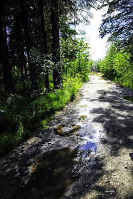 Desserted Photograph - Deserted Road After The Rain by Madeline Ellis