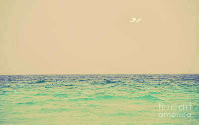 Photograph - Destin Florida 3 by Andrea Anderegg