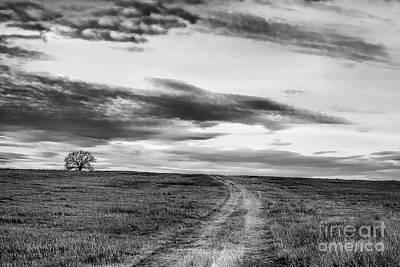 Photograph - Destination Unknown by Jim Garrison