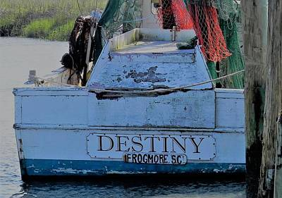 Frogmore Photograph - Destiny by Patricia Greer
