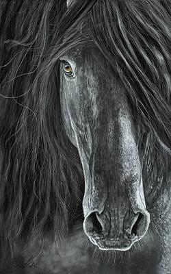 Detail In Black Print by Terry Kirkland Cook