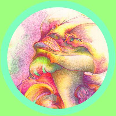 Pastel Pencil Digital Art - Detail One by Bodhi