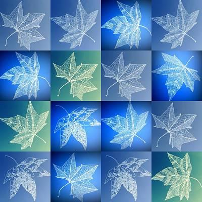Detailed Leaf Drawings Art Print
