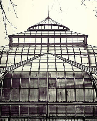 Belle Isle Photograph - Detroit Belle Isle Conservatory by Alanna Pfeffer