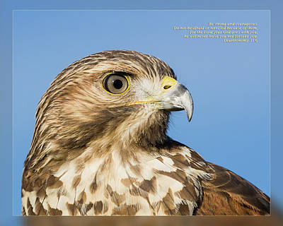 Photograph - Deuteronomy 31 6 by Dawn Currie