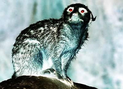 Digital Art - Devil Sloth by Ronald Irwin