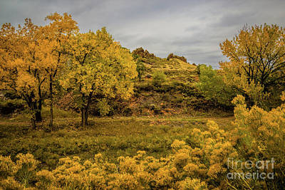 Devils Backbone Autumn Colors Art Print