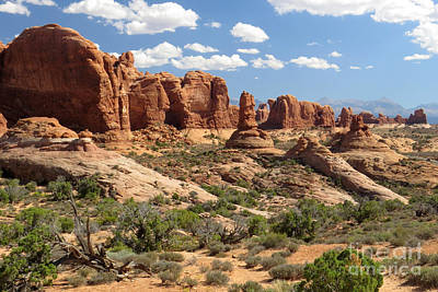 Photograph - Devils Garden by Frank Townsley