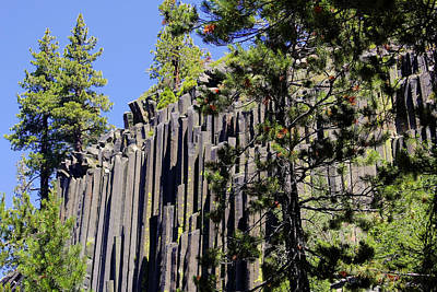 Carved Photograph - Devils Postpile - America's Volcanic Past by Christine Till