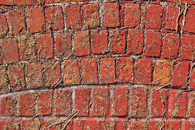 Photograph - Devined Brick Wall by Mary Bedy