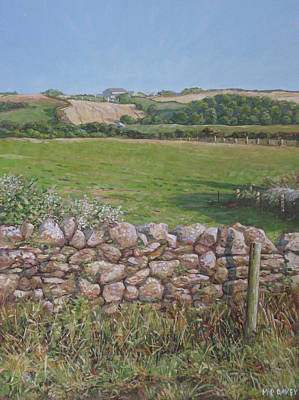 Painting - Devon Field And Drystone Wall by Martin Davey
