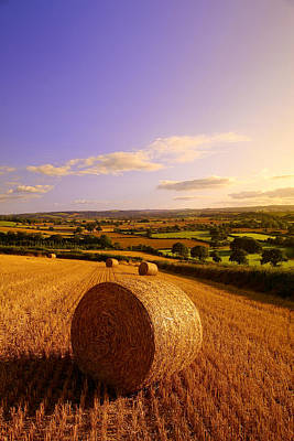 Sky Photograph - Devon Haybales by Neil Buchan-Grant