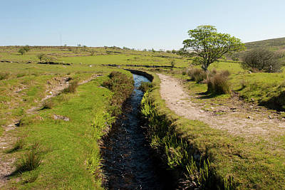 Photograph - Devonport Leat, Dartmoor by Helen Northcott