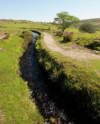 Photograph - Devonport Leat, Dartmoor II by Helen Northcott