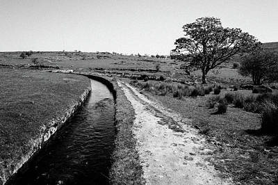 Photograph - Devonport Leat, Dartmoor IIi by Helen Northcott